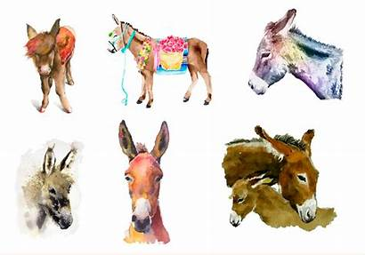 Donkey Watercolor Painted