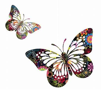 Butterfly Butterflies Clipart Vector Clip Watercolor Transparent