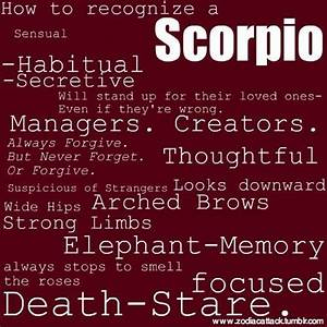 Get to Know Scorpio - Love Matches, Strengths, and ...