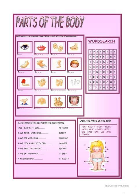 body worksheet  esl printable worksheets