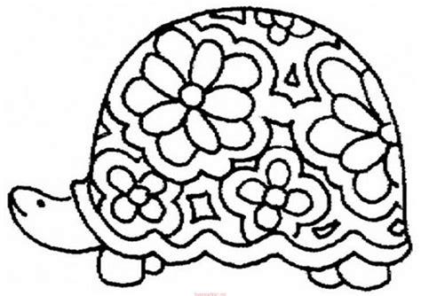 Kaplumbaa Boyama Sayfalar 13 Snf Retmenleri In