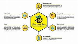 Save Local Bee Diagram