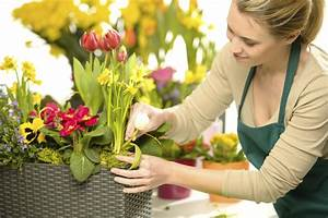 Selecting a wedding florist - Articles - Easy Weddings