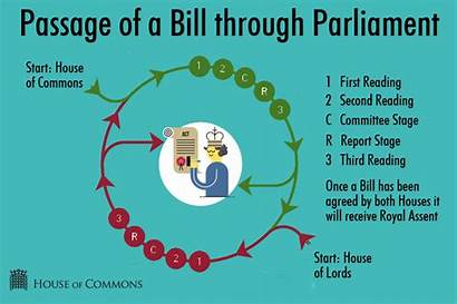 Parliament Diagram Parliamentary Lords Stages Commons System