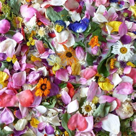 dried flower petals dry flowers confetti wedding