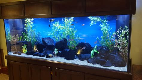 aquariums fishman services llc