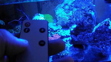re led pour aquarium 28 images eclairage 224 led pour aquarium my aquarium club re cheap