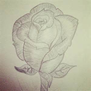 Rose Flower Drawing Pencil