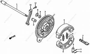 Honda Motorcycle 1986 Oem Parts Diagram For Rear Brake