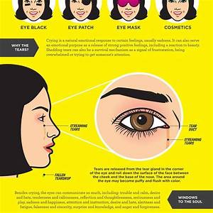 Mother Nature U0026 39 S Pop Science Guide To The Human Eye  Part 2
