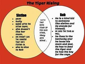 Matthew   Tamaki Primary School  The Tiger Rising
