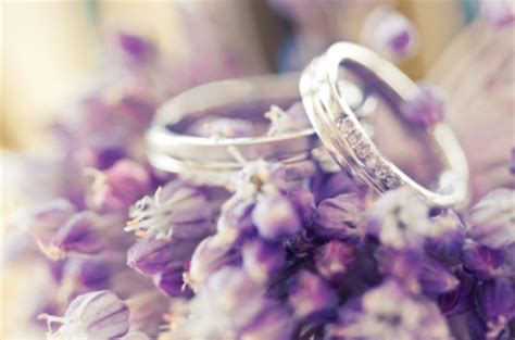wedding flowers nature background wallpapers