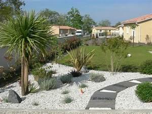 Palmier De Jardin : idee decoration jardin mineral avec palmier galerie ~ Nature-et-papiers.com Idées de Décoration