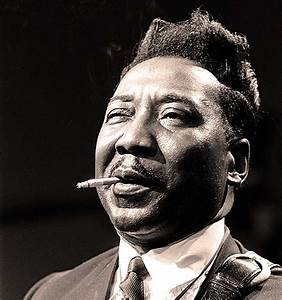 Muddy Waters - In Concert At CW Post College - 1977 ...