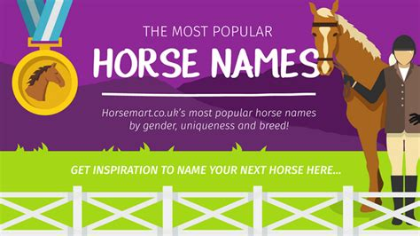 horse names perfect most popular horses whatever picking reason which infographic habitatforhorses