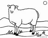 Sheep Coloring Pages Lamb Face Printable Easter Cool2bkids Drawing Getdrawings Clipartmag sketch template