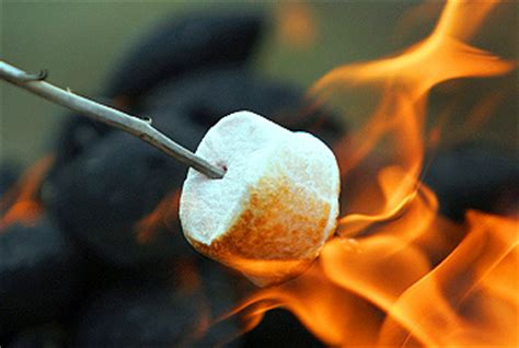 toasted marshmallow day aug