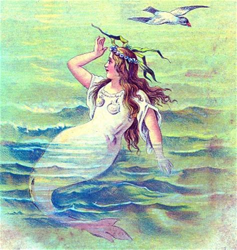vintage clip art beautiful mermaid  graphics fairy