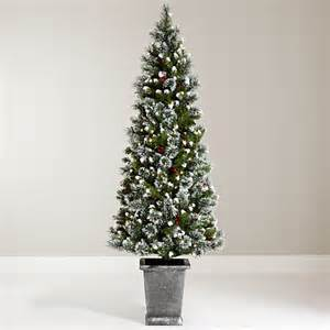 buy john lewis chamonix 6ft pre lit potted christmas tree