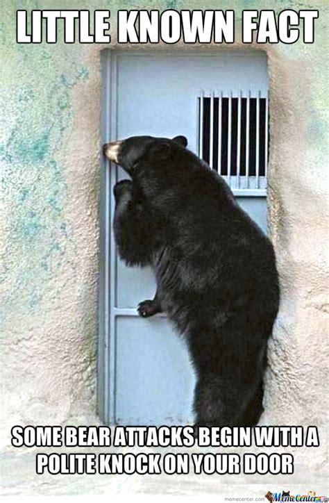 Funny Bear Memes - funny bear memes image memes at relatably com