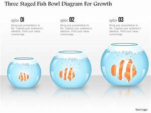 1214 Three Staged Fish Bowl Diagram For Growth Powerpoint