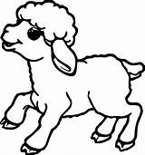Coloring Sheep Outline Popular sketch template