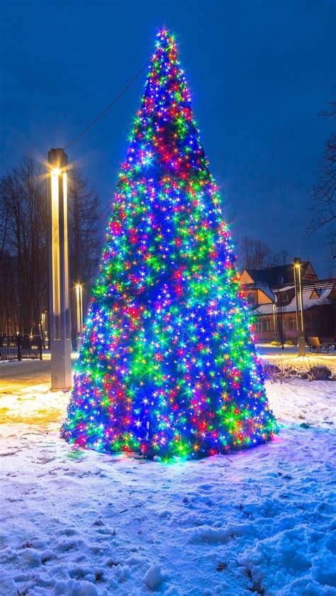 Tree Lights Iphone Wallpaper by Tree Decoration Lights Wallpaper Iphone