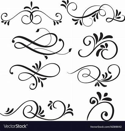 Calligraphy Flourish Vector Decorative Lines Drawing Handwriting
