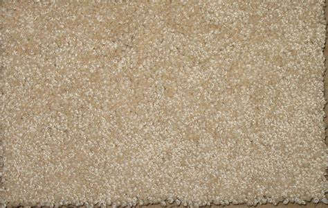 Plush Carpet  Carpet Vidalondon