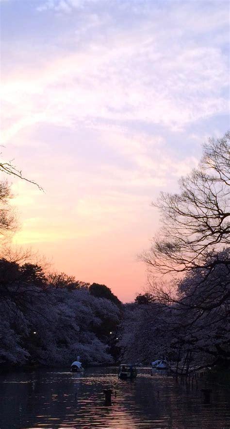 landscape pond sunset wallpapersc iphone