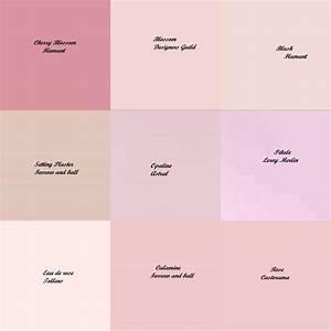 nuances de rose demoiselle d39honneur pinterest de With palette de couleur leroy merlin 7 nuancier couleur wikilia fr