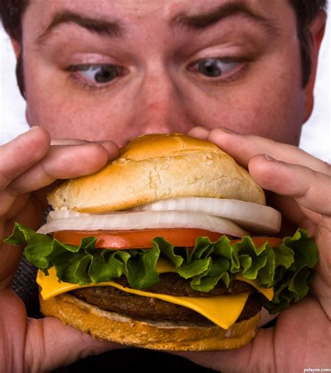 what to eat with hamburger cheese burger photography contest 15739 pictures page 1 pxleyes com