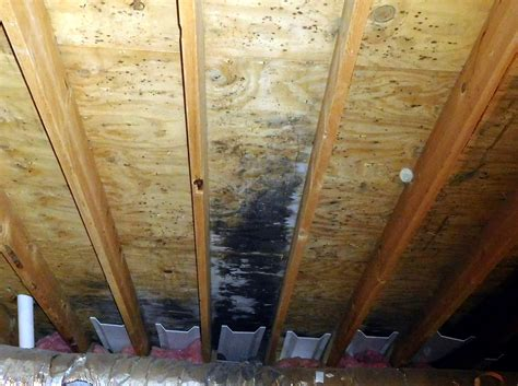 gable end attic exhaust fans bathroom fan venting into the soffit quigley mold