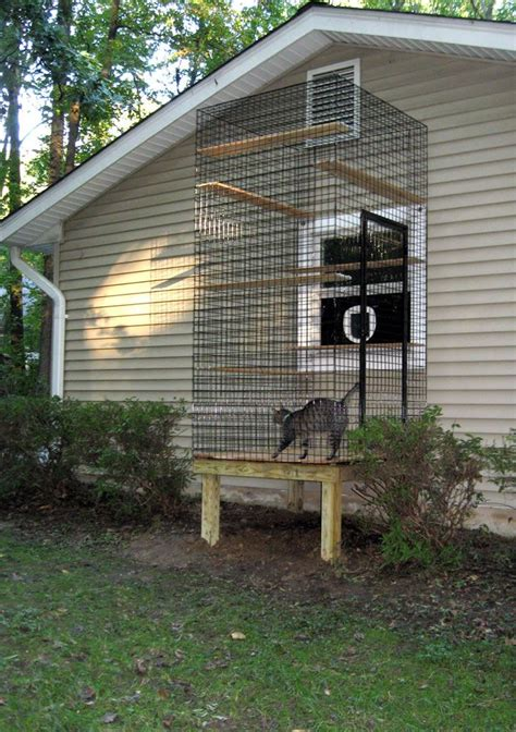 window cat door window cat door and cat aviary for inside cats cats