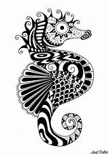 Zentangle Coloring Pages Horse Sea Adult Adults Water Printable Simple Worlds Mandala Colouring Coloriage Tattoo Seahorse Muster Ocean Mandalas Malen sketch template