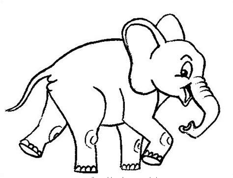 elefante da colorare  bambini  pineglen