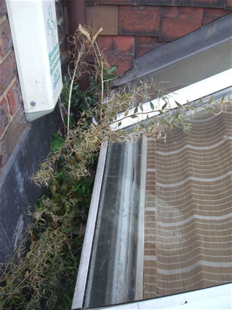 Gutter and fascia cleaning. Conservatory Medic