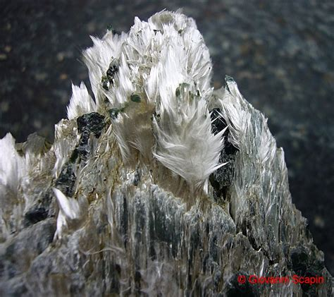 top  toxic minerals geology page