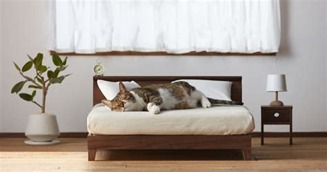 miniature cat furniture  japan    master