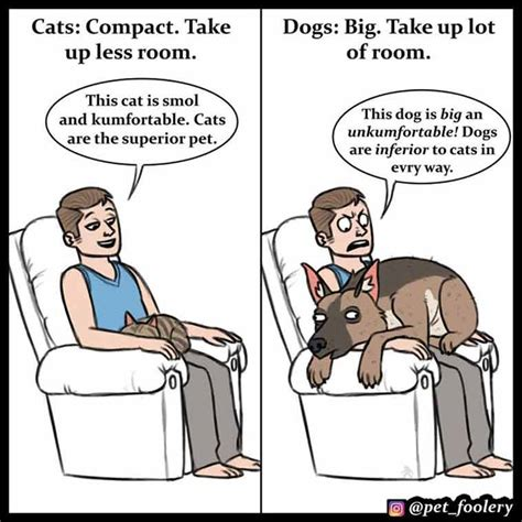 cats dogs better than why comics then cat funny reasons explaining superior hilarious pet foolery decided lot boredpanda these aha