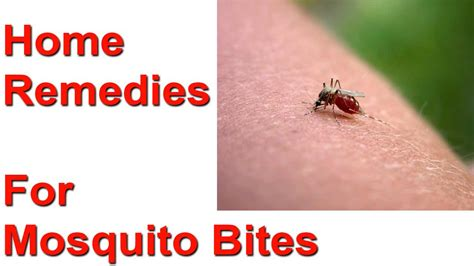 9 Simple Remedies Against Mosquito Bites Christmas Crafts Tutorials Angel For Preschoolers How To Make A Centerpiece Minecraft Craft Mod Ideas Cards Card Easy Table