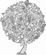 Coloring Tree Cherry Adults Printable Getcolorings sketch template