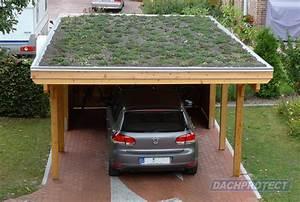 Welches Holz Für Carport : dachbegr nung gartenhaus oder carportdach im satten gr n ~ A.2002-acura-tl-radio.info Haus und Dekorationen