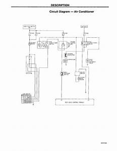 97 Honda Accord Condenser Fan Wiring Diagram  97  Free