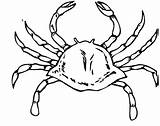 Crab Coloring Pages Crabs Printable Drawing Coloringpages101 sketch template
