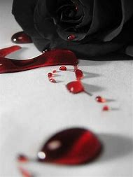 Best Bloody Rose Ideas And Images On Bing Find What Youll Love