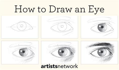 drawing  beginners  step  step guide
