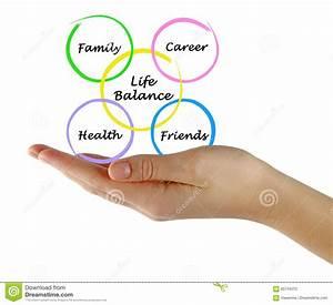 Diagram Of Life Balance Stock Photo  Image Of Fitness