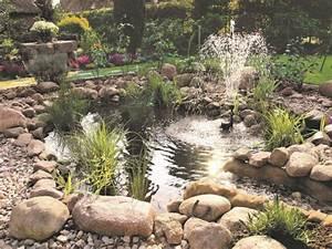 Jardin Avec Bassin : 1 beau bassin pour mon jardin ~ Melissatoandfro.com Idées de Décoration