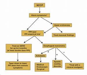 Diagnostic And Treatment Algorithm For Noncardiac Chest